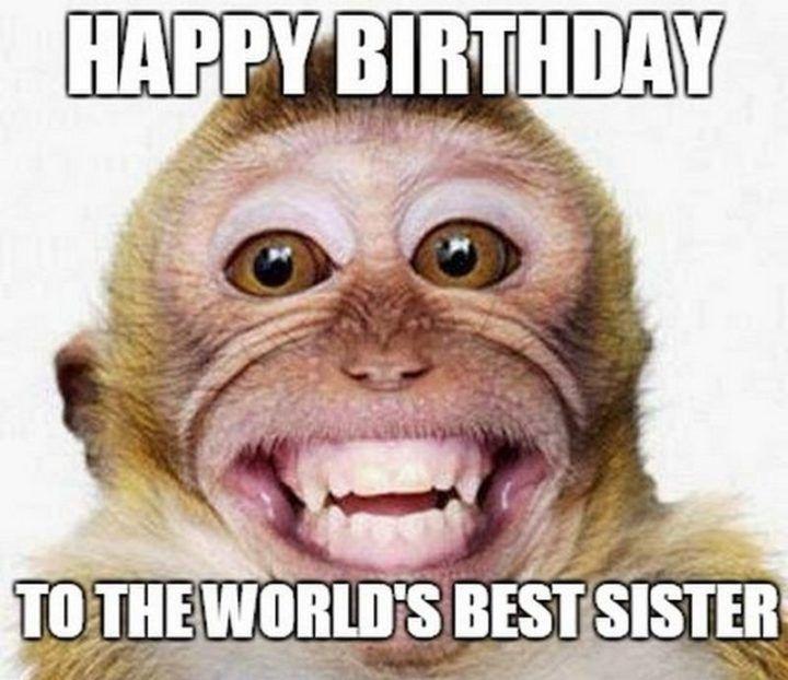 happy birthday Meme Truehindi 7